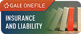 Insurance and Liability Image.png