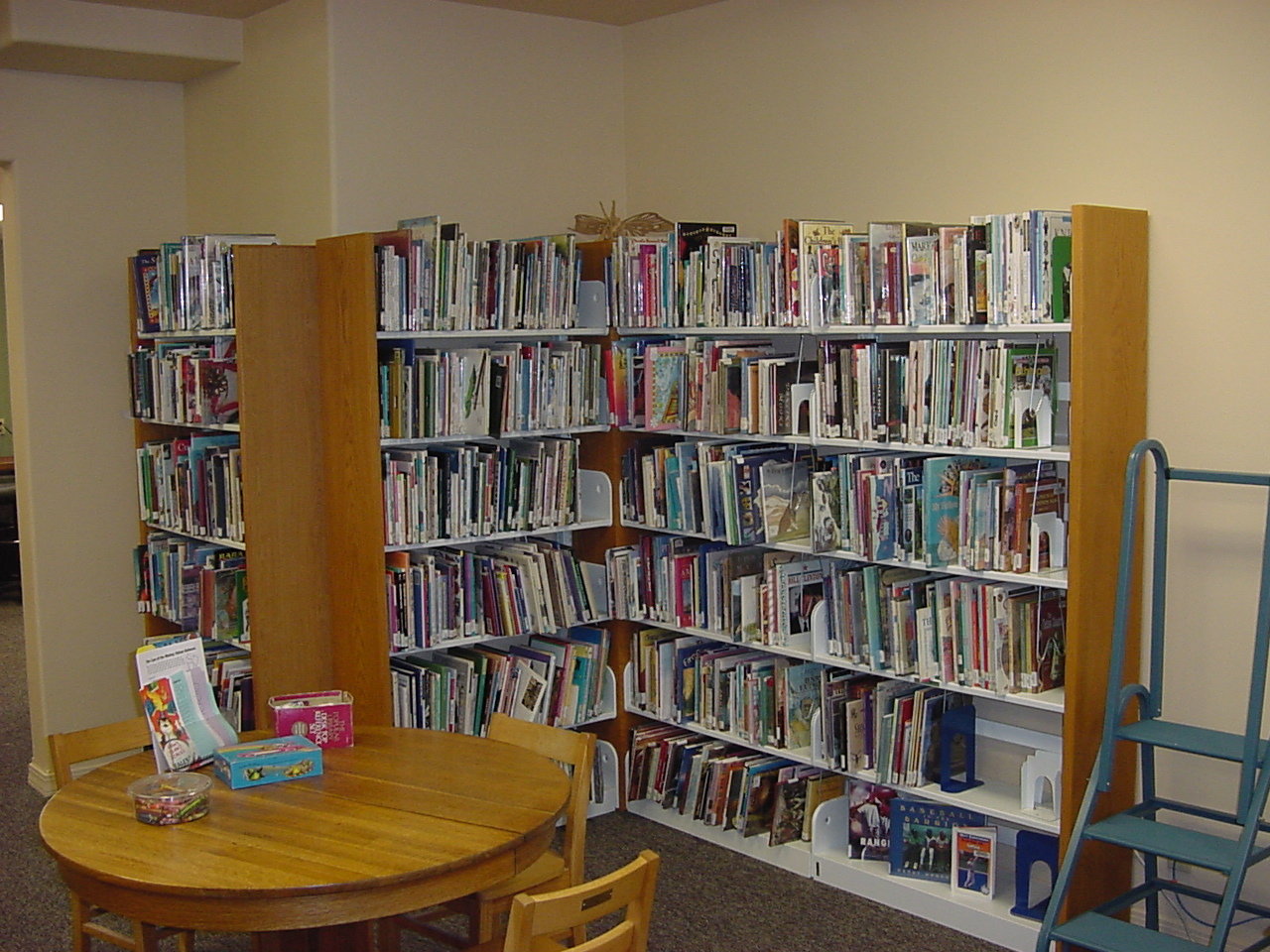 Childrens Non-Fiction Book Area!